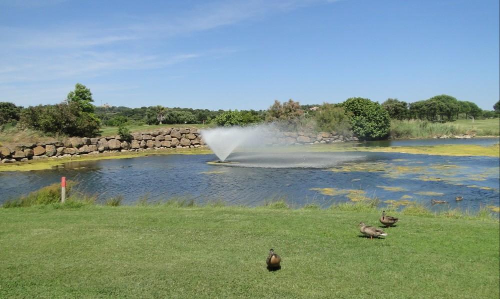 Ségolène Royal, ministre de l'Ecologie, soutient le projet d'irrigation du golf de Spérone (Corse) avec des eaux usées traitées