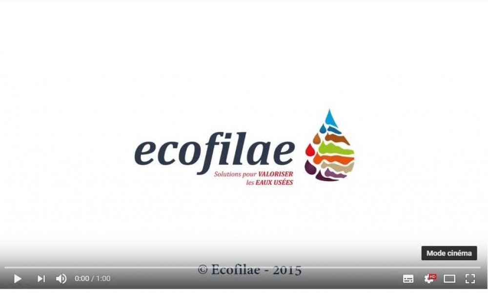Ecofilae, présentation en 1 minute