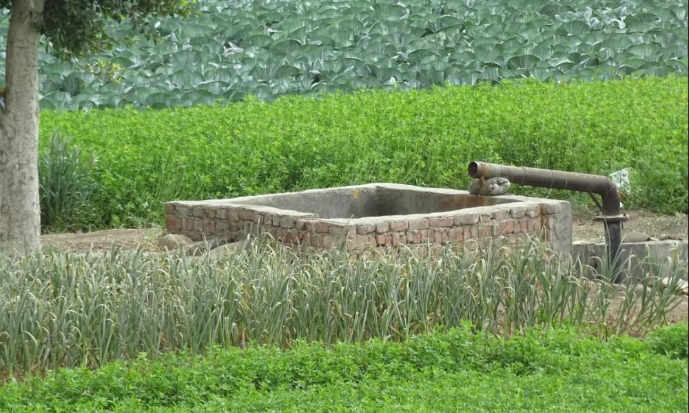 La réutilisation des eaux usées traitées en Méditerranée: retour d'expérience et aide à l'élaboration de projets