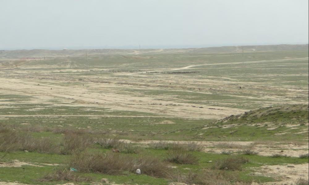 Etude potentielle pour un pilote démonstrateur terrain pour valoriser des eaux de production pétrolières salées en irrigation